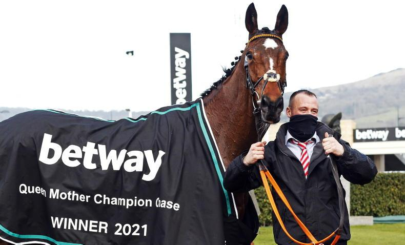 BREEDING INSIGHTS: Another day of glory for Irish-breds
