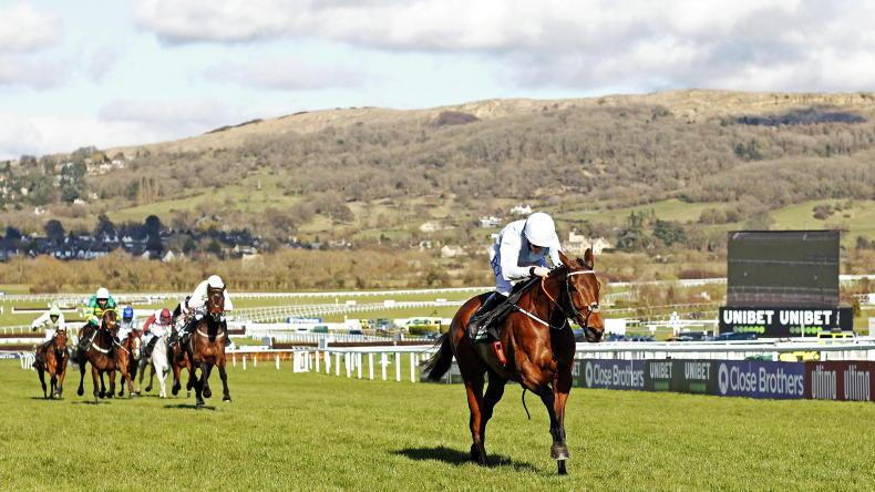 CHELTENHAM TUESDAY: Dynamic duo maintain perfection on the grandest stage