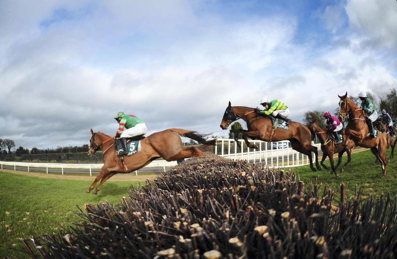 PICTURE DESK: Photos of the week out and about at the races