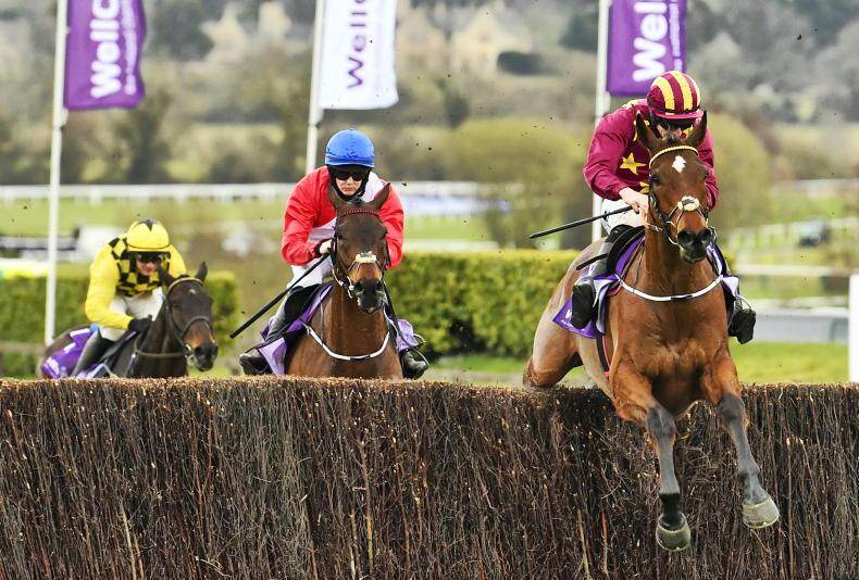TIME WILL TELL: Minella perfect on Gold Cup stage