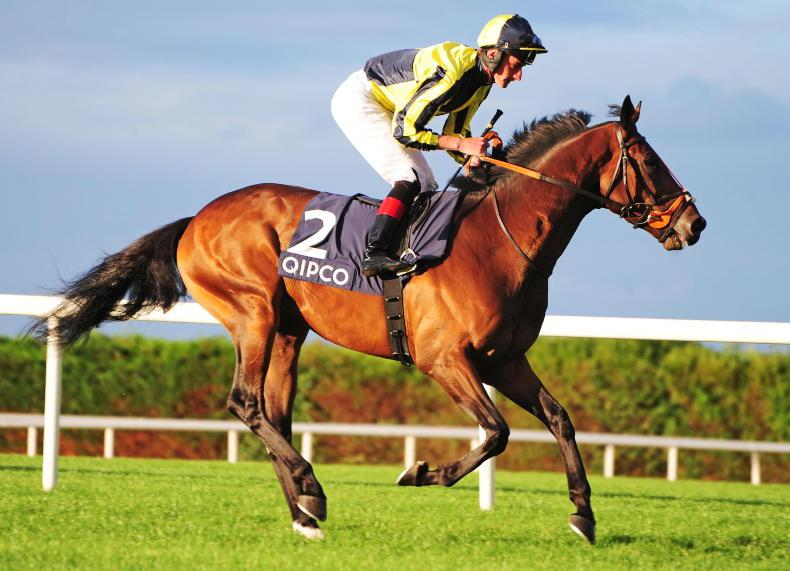 SIRE REVIEWS: Standing at Starfield Stud: My Dream Boat