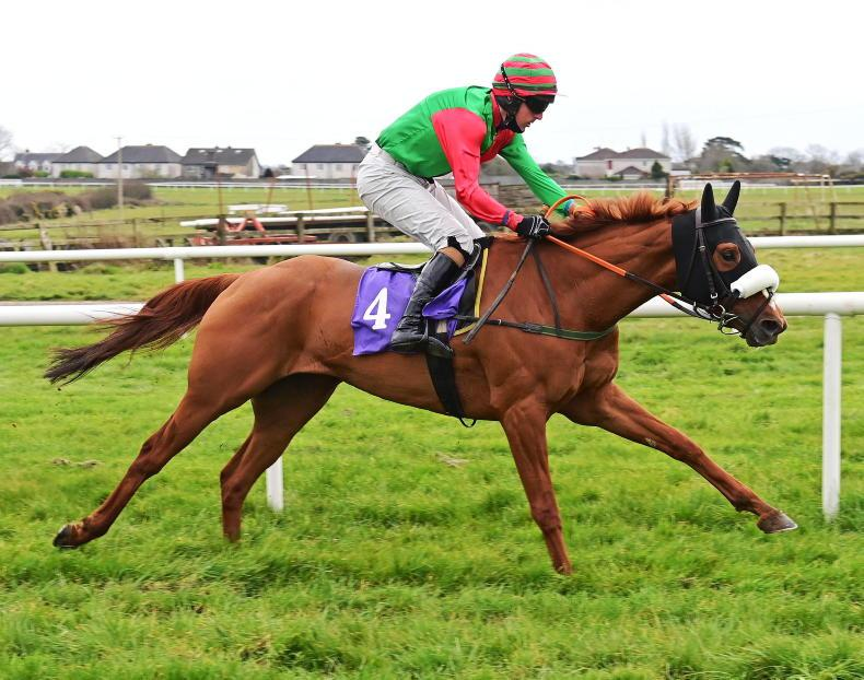 SALES: PTP 'track' runners on offer at Newmarket