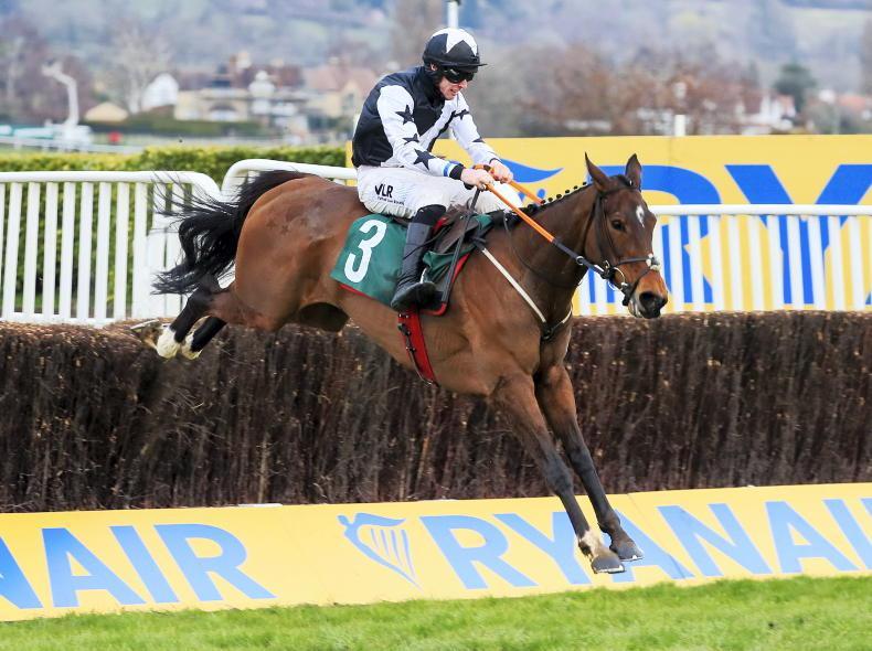 EOGHÁIN WARD: Thirteen Cheltenham winners started in Irish points