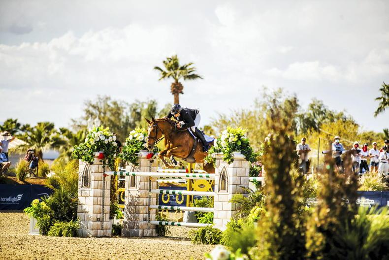 IRISH-BRED SHOW JUMPERS: March 27th 2020