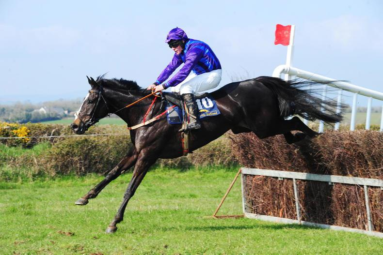 HORSES TO FOLLOW: Ones to watch next time out
