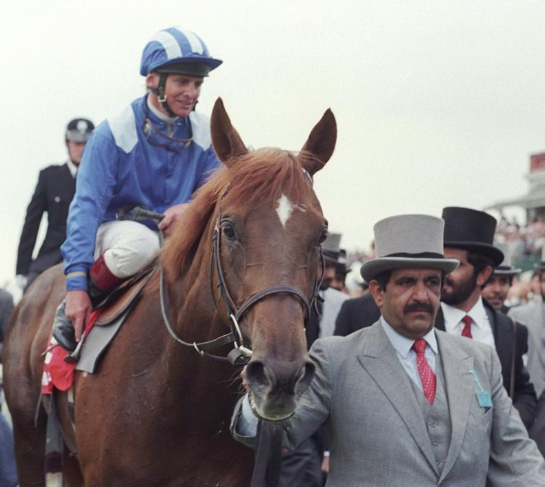 Sheikh Hamdan: A giant of racing and breeding