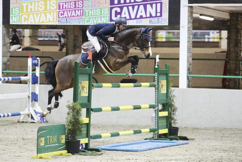 SHOW JUMPING: Carey off to flying start with his new business