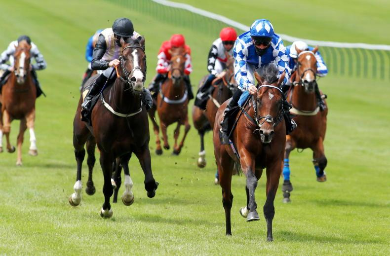 RACING CENTRAL: Gosdens put faith in apprentice for first domestic marquee race