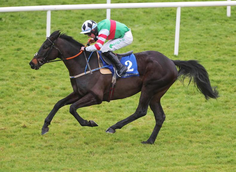 LIMERICK SUNDAY: Chatham out to defy quick back-up in Grade 3 feature