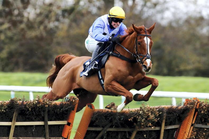 BRITISH PREVIEW: Back this 7/1 shot to progress again in Novice Mares' Final