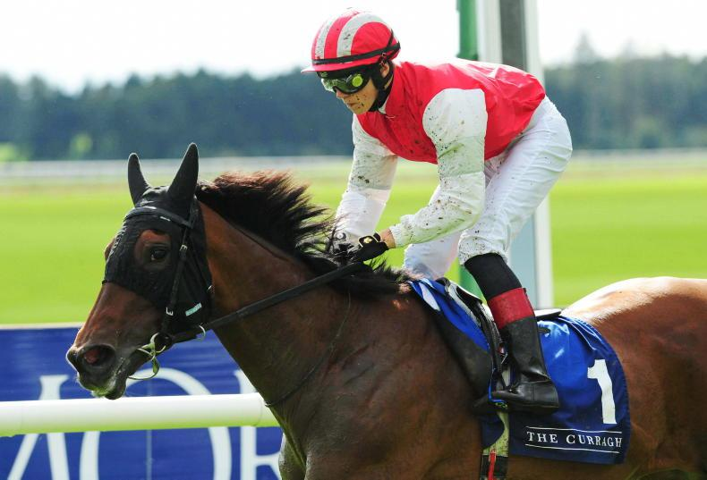 CORK SATURDAY: Mighty Blue can her make fitness pay