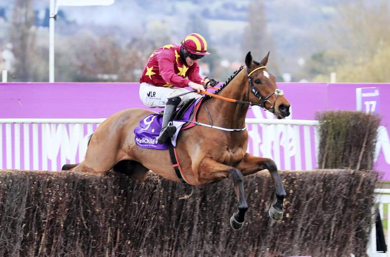 Minella Indo could bid for Gold Cup double at Punchestown