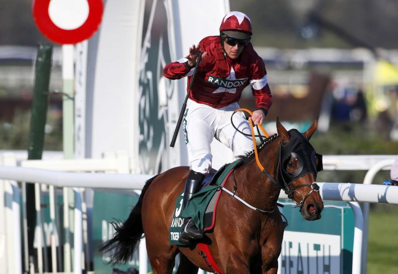 A Plus Tard to swerve Aintree but Tiger back in town