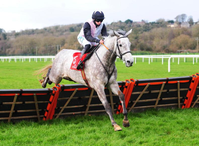 FAIRYHOUSE SUNDAY: Gentlemansgame going the right way