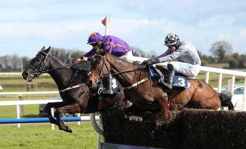 Easy Game delivers in Devenish Chase
