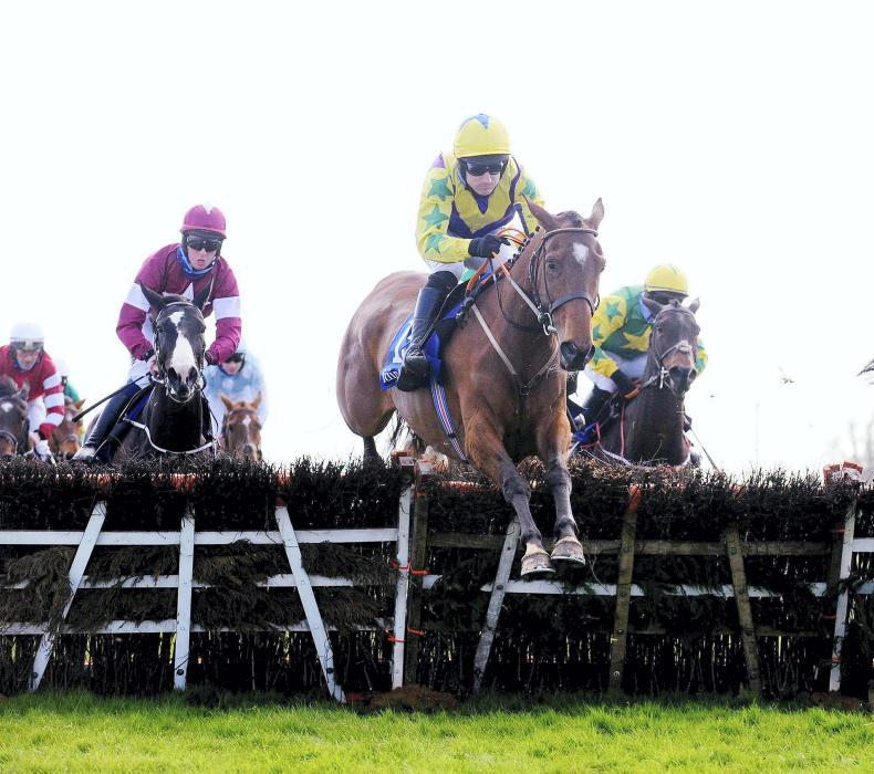 FAIRYHOUSE SUNDAY: Teak-tough Skyace hits the jackpot