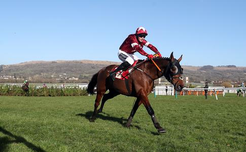 Tiger Roll faces eight in Betway Bowl