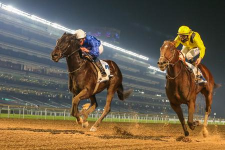 Belmont Stakes beckons for Rebel's Romance