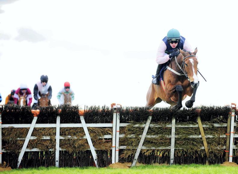 FAIRYHOUSE MONDAY: Returning Stormy Ireland back in form