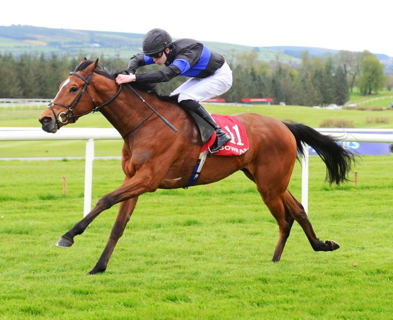 GOWRAN WEDNESDAY: Better days ahead for impressive Queenship