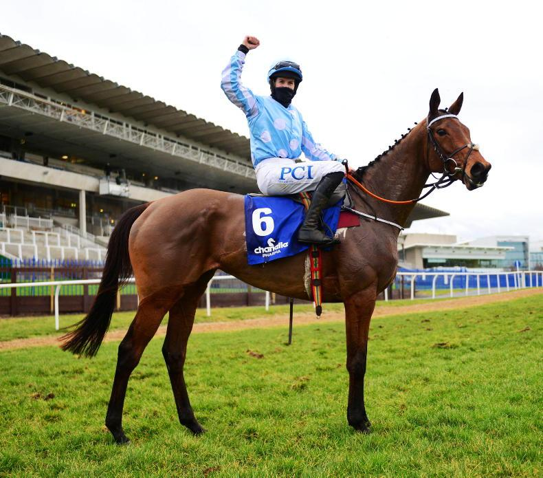 PARROT MOUTH: Masters of mischief lay down Punchestown challenge
