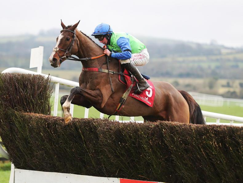 HORSES TO FOLLOW: 10 to note from the last weeks' action
