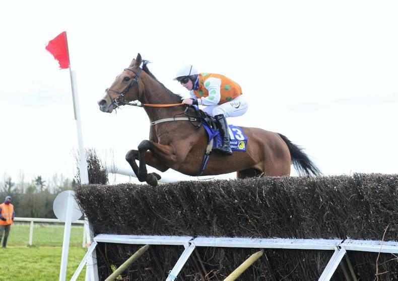 POINT-TO-POINT - CORK SATURDAY: American Mike leads the charge