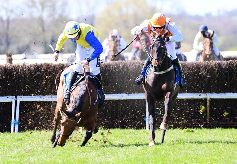 PICTURE DESK: Point-to-points get back in action