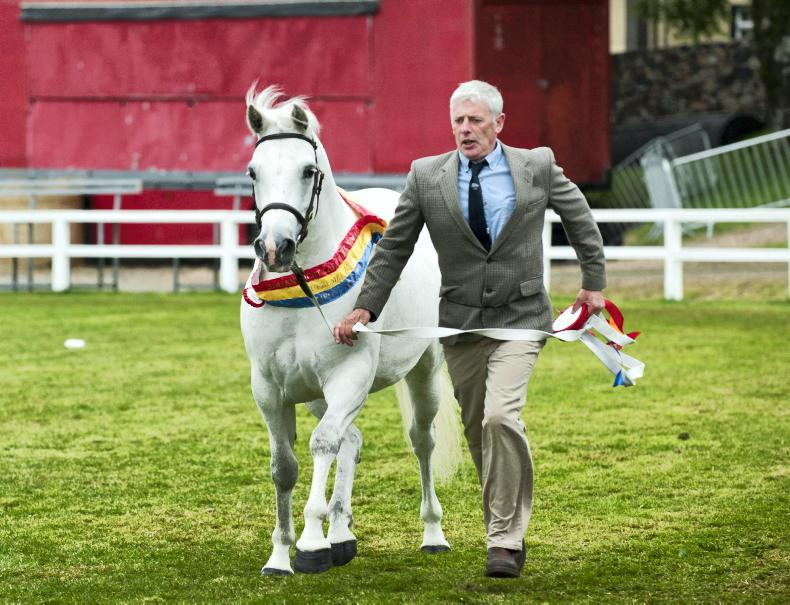 NEWS: Clifden Show to take place in September