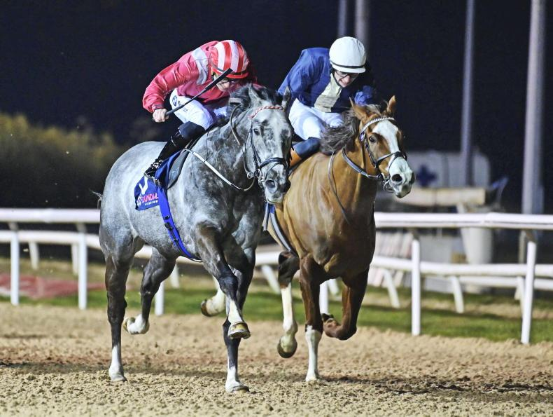 DUNDALK SUNDAY PREVIEW: Go with Lynam's Power to prosper on the polytrack