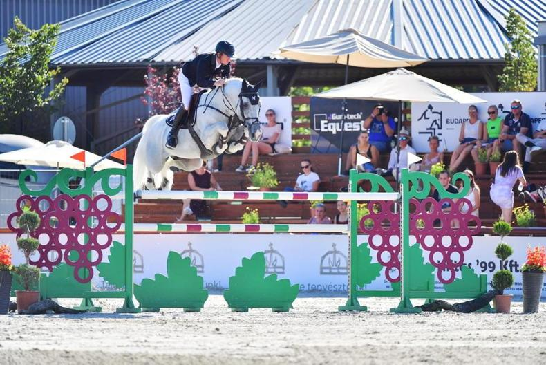 SHOW JUMPING: Grand Prix win for Butler