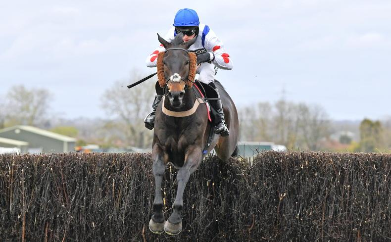 Clan Des Obeaux still in Sandown contention