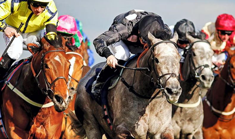 Listed winning Dubawi filly added to sale