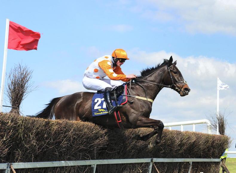MEATH FOXHOUNDS & TARA HARRIERS: Fairyhouse Saturday: Murphy in the limelight