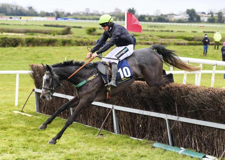 MEATH FOXHOUNDS AND TARA HARRIERS: Fairyhouse: Harry shows the way home for Bowe