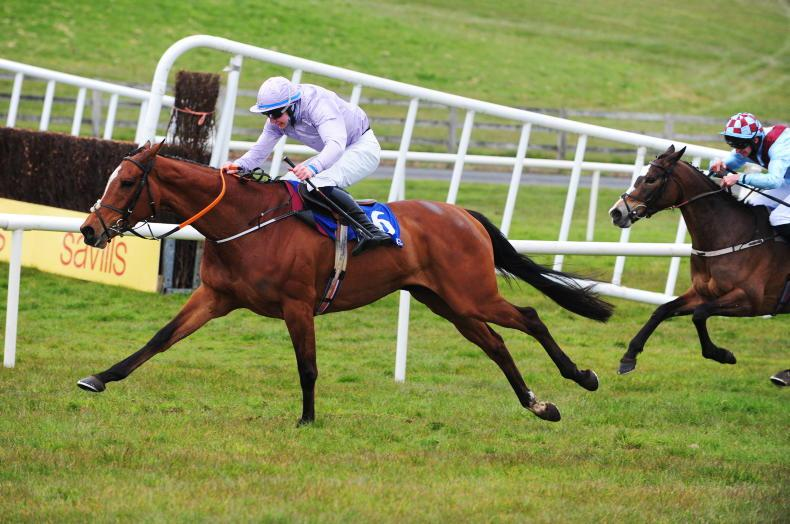 TRAMORE SUNDAY: Gala day for de Bromhead