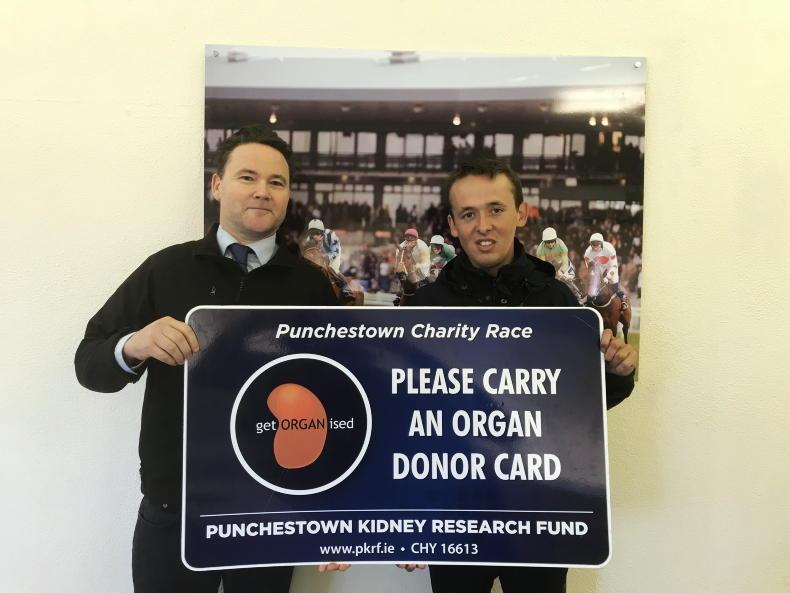 PARROT MOUTH: Charity race Punchestown curtain raiser