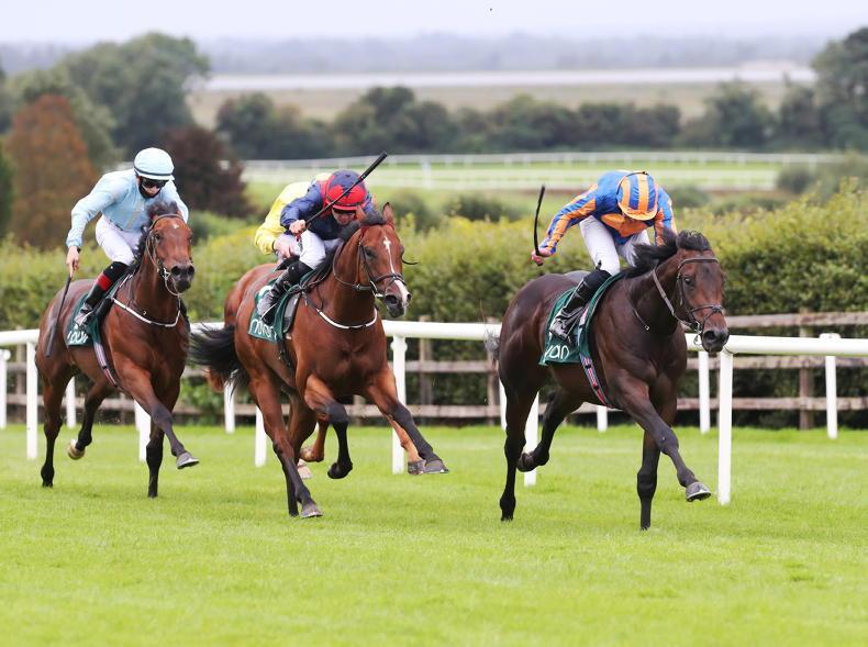 NAVAN SUNDAY: Lipizzaner looks good for another win at Navan