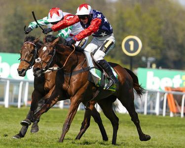 Enrilo loses Sandown feature in stewards' room