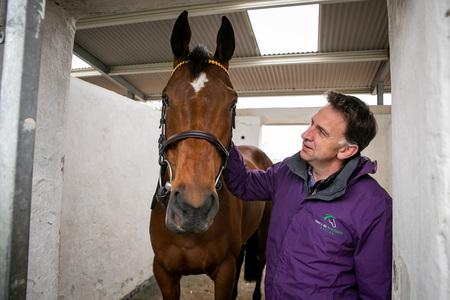 Minella Indo ruled out of Punchestown with bruised foot