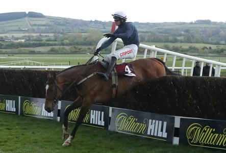 Colreevy caps racing career with Punchestown glory