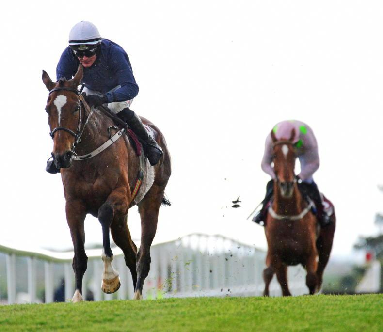 PUNCHESTOWN TUESDAY: Colreevy conquers all