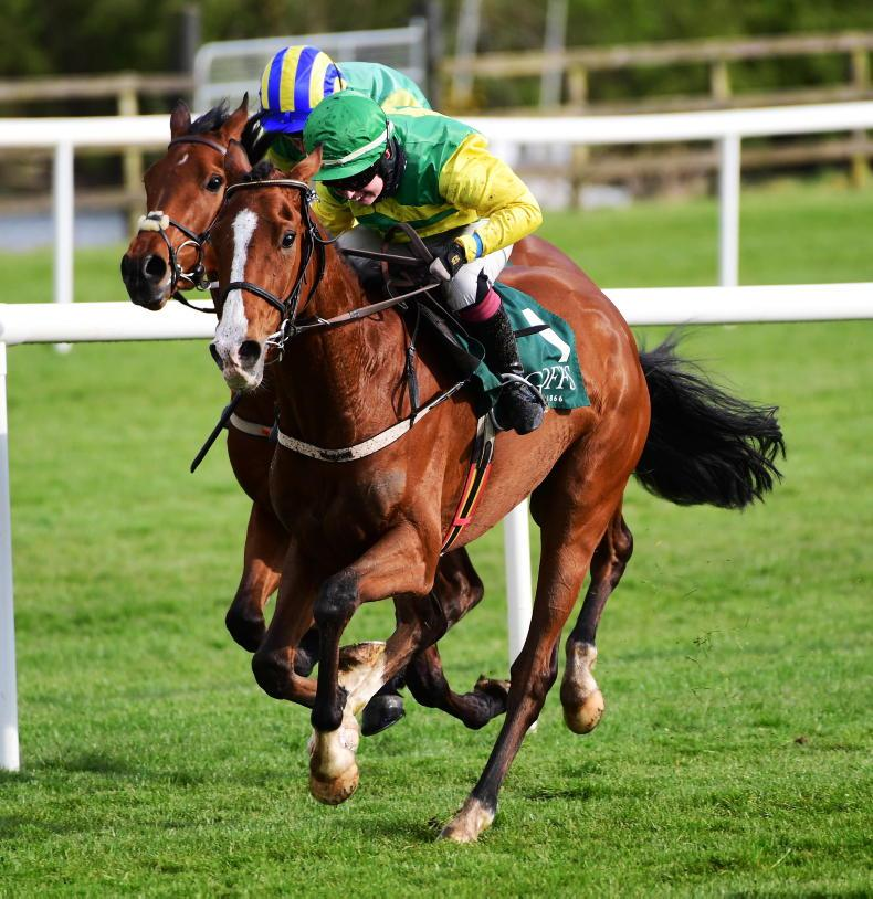 PUNCHESTOWN TUESDAY: Jody joy in bumper day for Mullins