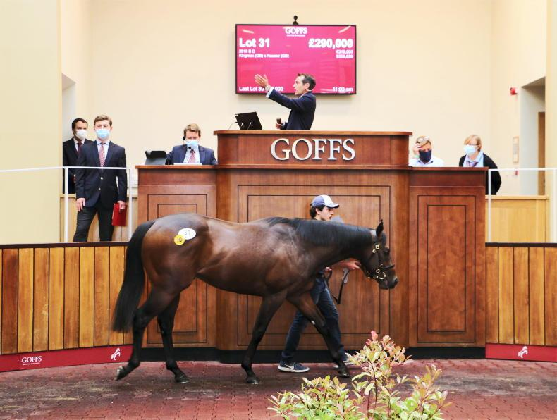 Arqana Breeze Up moves to Doncaster