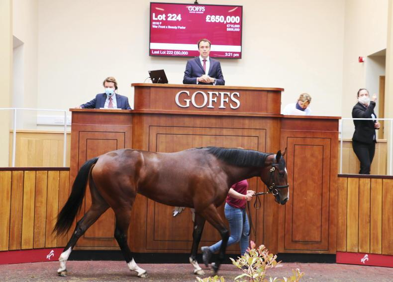 SALES: Arqana Breeze Up moves to Doncaster