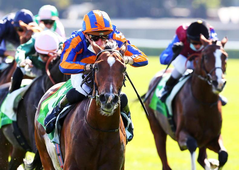 FRENCH PREVIEW: Mogul out to make a mark again