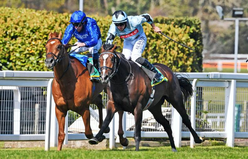 TIME WILL TELL: Adayar catches the eye with fast finish in Derby trial