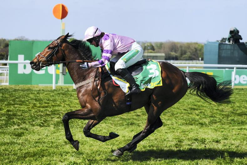 TIME WILL TELL: Strong pace provides a top class performance from Greaneteen
