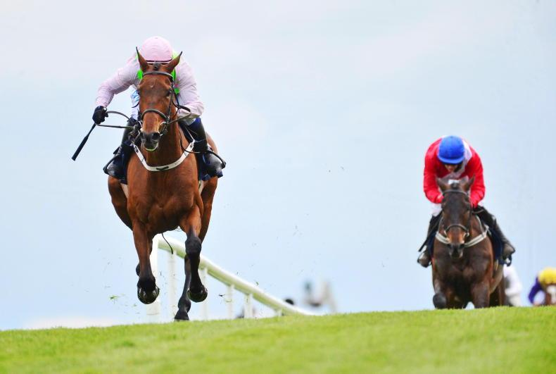 TIME WILL TELL: The real Chacun stands up at Punchestown