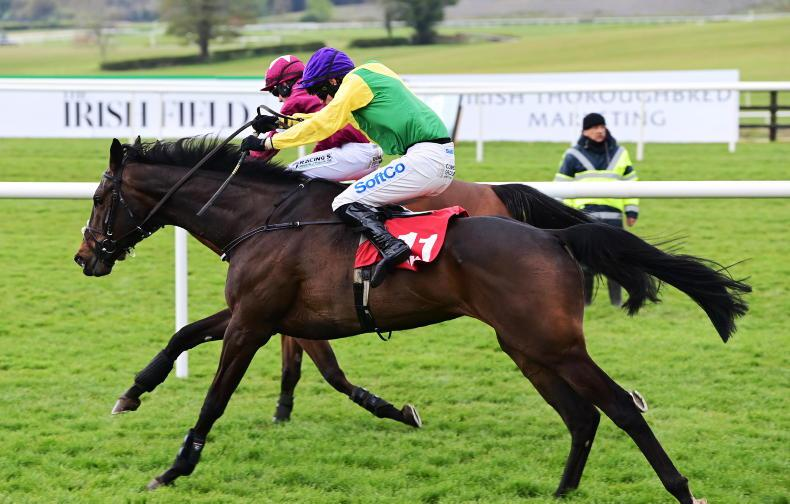 PUNCHESTOWN FRIDAY: Response comes just in time for O'Keeffe and Harrington